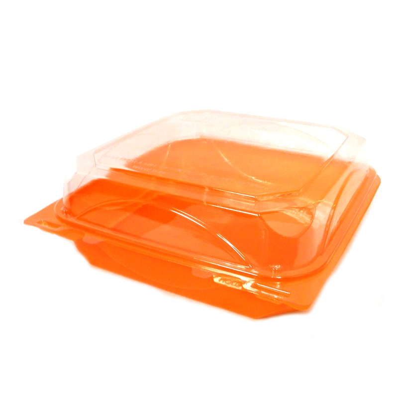 CONTAINERS PLASTIC CLEAR/COLOR HINGED